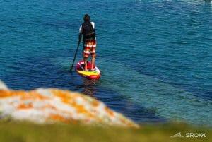 Venez découvrir la descente du Loing en Paddle