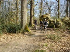 VTT à travers les Chaos rocheux de Fontainebleau